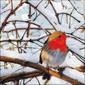 Servietten, Robin in a winter Tree